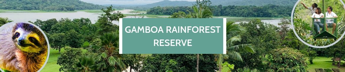 Gamboa Rainforest 2
