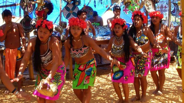 Cultura Indígena