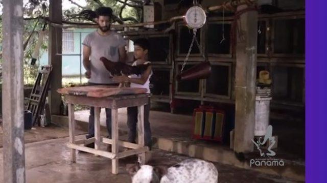 Se presenta nuevo video para campaña de turismo en Panamá.